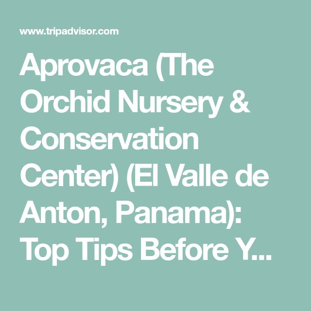 Aprovaca (The Orchid Nursery & Conservation Center) (El Valle de Anton, Panama): Top Tips Before You Go (with Photos) - TripAdvisor