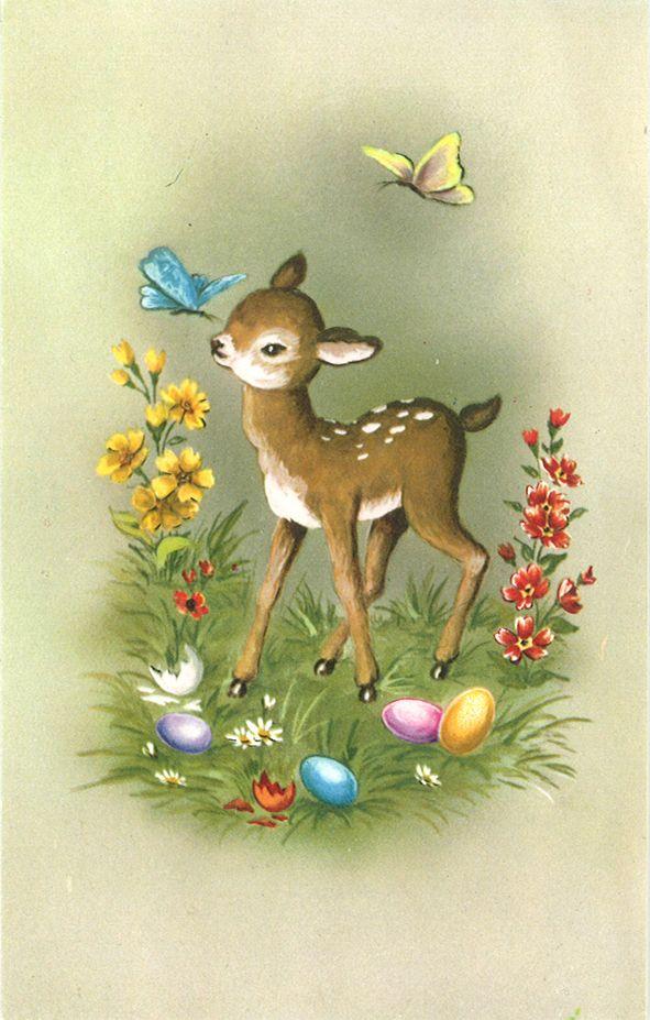 Ссср, открытки оленята