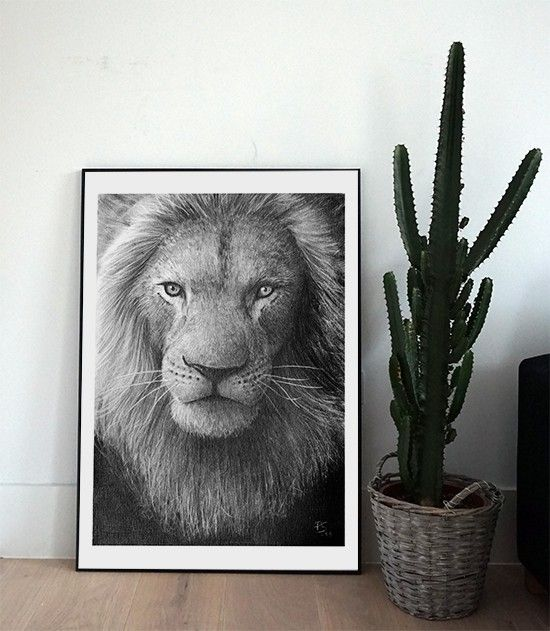Lion, black/white pencil illustration by Scandinavian Per Svanström -Nordic Design Collective