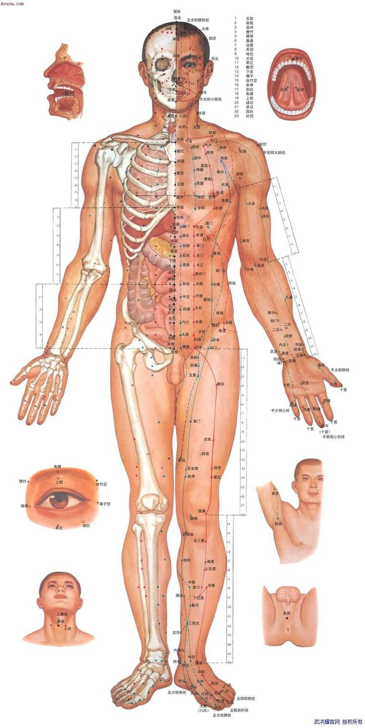 120 best acupuncture images on pinterest acupuncture points