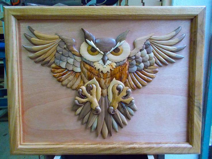 Owl by carkralj