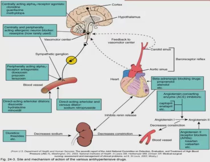Best Pharmacology Images On   Nursing Schools