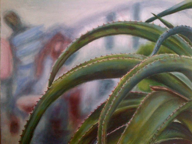 Aloe in oils on canvas