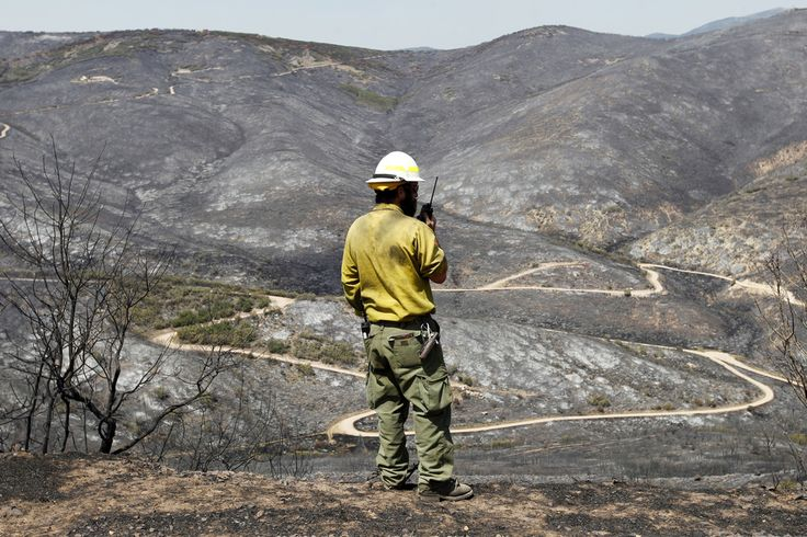 Dustin Klegg, wildfire operations manager with Utah DNR Forestry Land and State Parks looks over a burned mountainside from the Rockport 5 Fire Friday August 16. (Al Hartmann     The Salt Lake Tribune)
