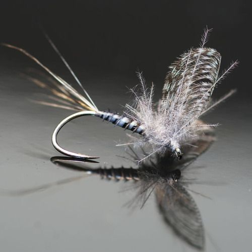 553 best fly tying materials images on pinterest fishing for Fly fishing materials