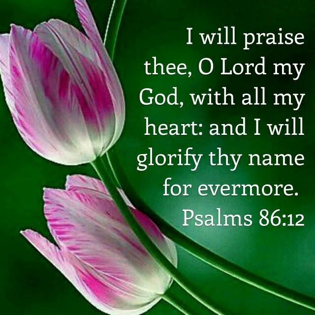 Psalms 86:12 KJV Another prayer psalm of David, seeking God's forgiveness.