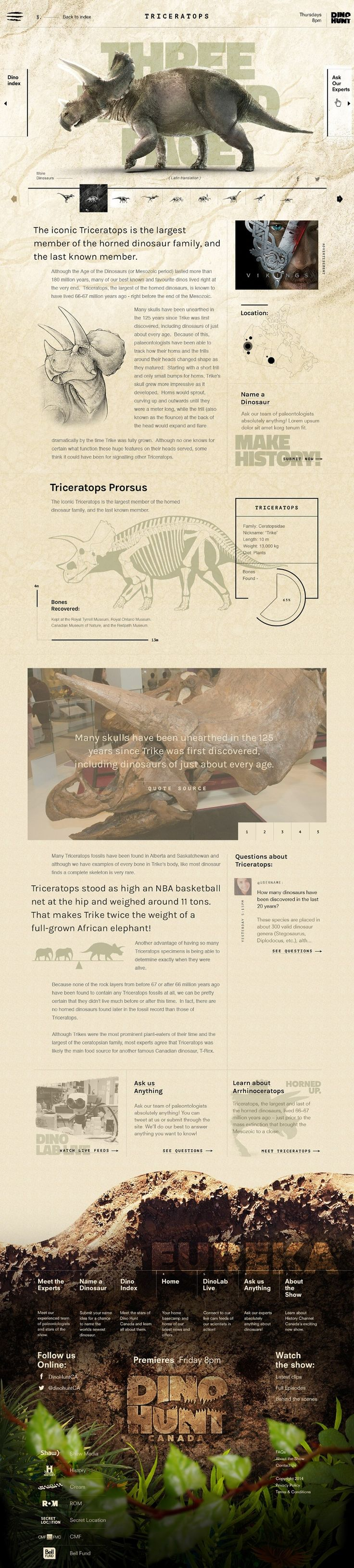 Dino Hunt. A dream community for dinosaur lovers.