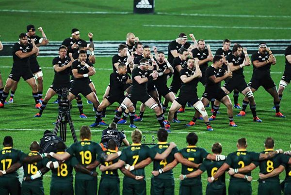 Rugby World Cup Group B Preview And Predictions South Africa New Zealand Canada Italy And Namibia With Images Rugby World Cup World Cup Groups Rugby