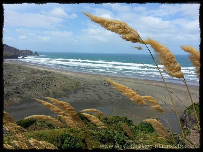 Bethells Beach toi toi - Auckland N.Z