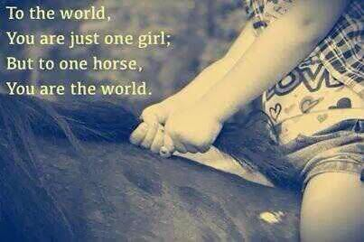 I remember when I had a strong bond with a horse I use to ride and I like to think I was the world to her, because she would come and for others run away.