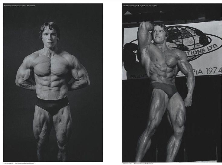 352 best Schwarnegger images on Pinterest Bodybuilding, Exercises - fresh arnold blueprint day 11