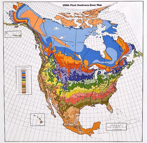 USDA Hardiness Garden Zone Finder.  This website has a great planting calendar based on zones too.