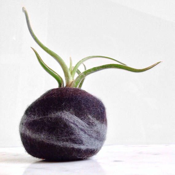 Felted wool rock-shaped vase. Ideal for a tillandsia air