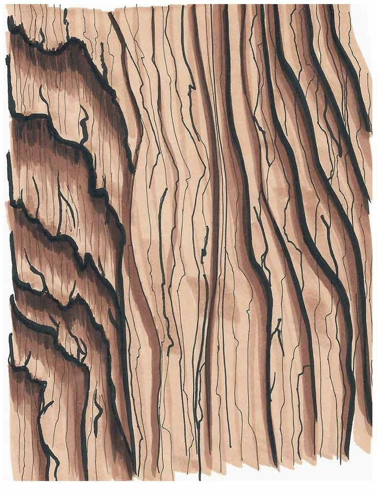 how to draw wood grain