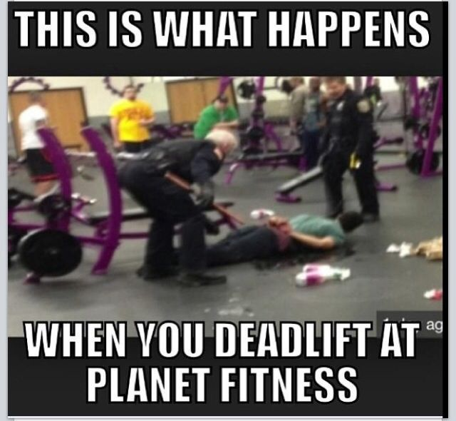 Free Weights Planet Fitness: 289 Best Images About Gym Humor On Pinterest