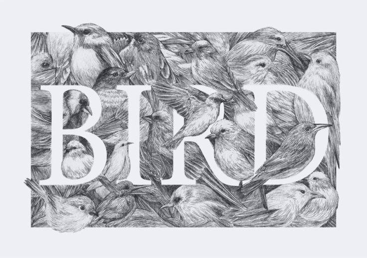 [펜화,typo] BIRD : 네이버 블로그