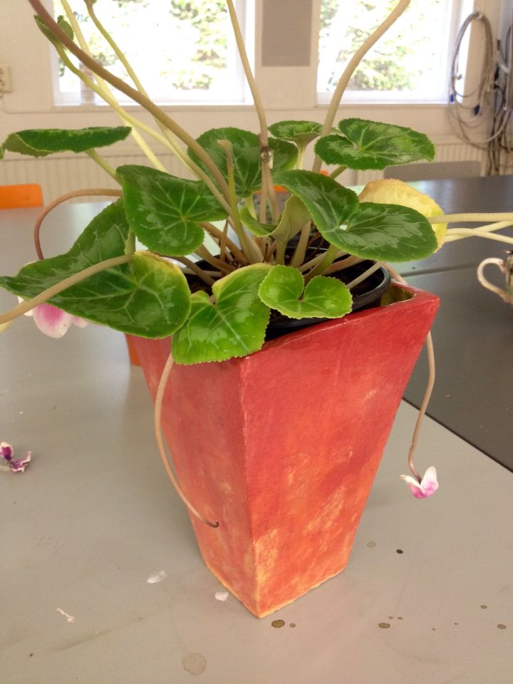 Rödvarm kubisk kruka med fin blomma