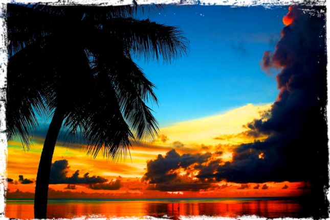 Enjoy the blue oceanic waves and the surroundings in the tropical holiday destination in Samoa.