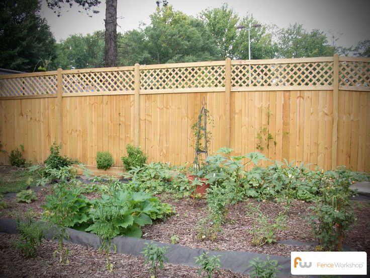 The Dublin Lattice Top Wood Privacy Fence Pictures