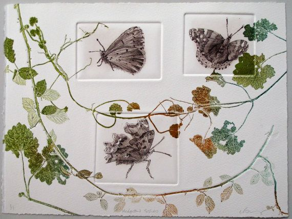Hedgerow series. Butterflies. Drypoint and monoprint Lynne Bailey