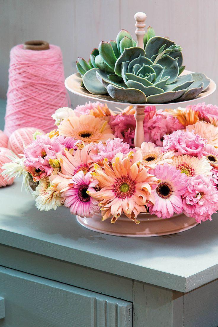 Small pink gerbera flowers on a plate #pinkegerberas #whitegerberas #inspiration #colouredbygerbera #dutchgerbera