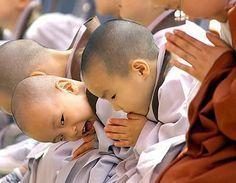 Como fazer uma meditação gassho - a meditação no Reiki
