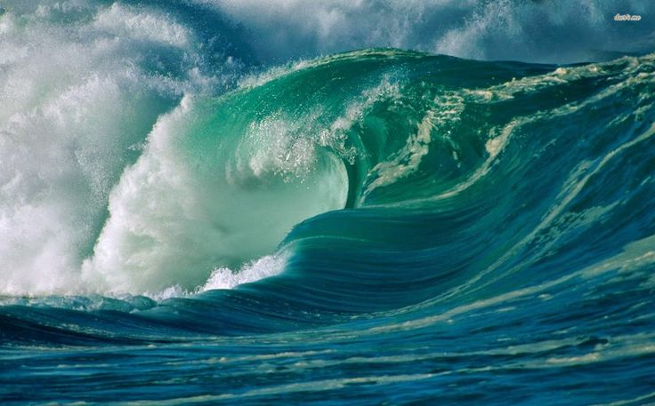 Media Wave Handling, http://yook3.com, Wilfried Ellmer.
