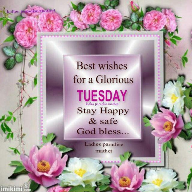 Good Morning Tuesday Messages : Best images about friendship quotes pics on