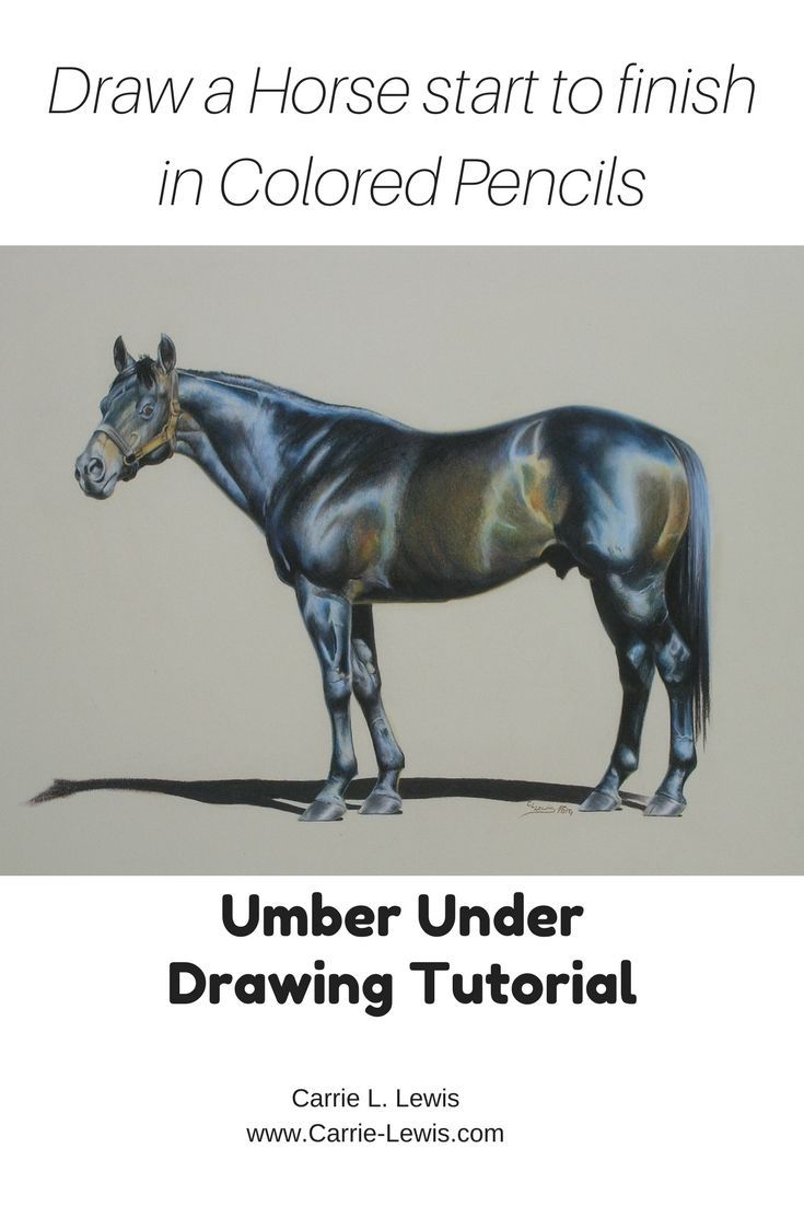 UPDATED but still FREE. Step-by-step, beginning to end tutorial showing how to draw a dark horse with colored pencils.