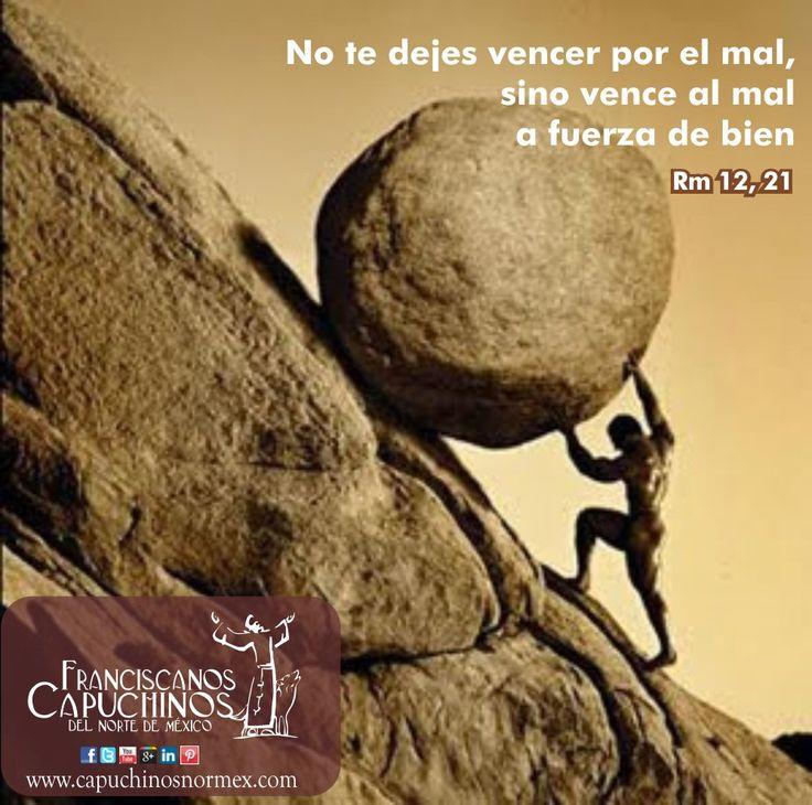 No te dejes vencer por el mal, sino vence al mal a fuerza de bien (Rm 12, 21).