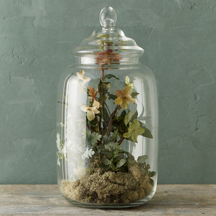 A bit of green for you from our terrarium shop.