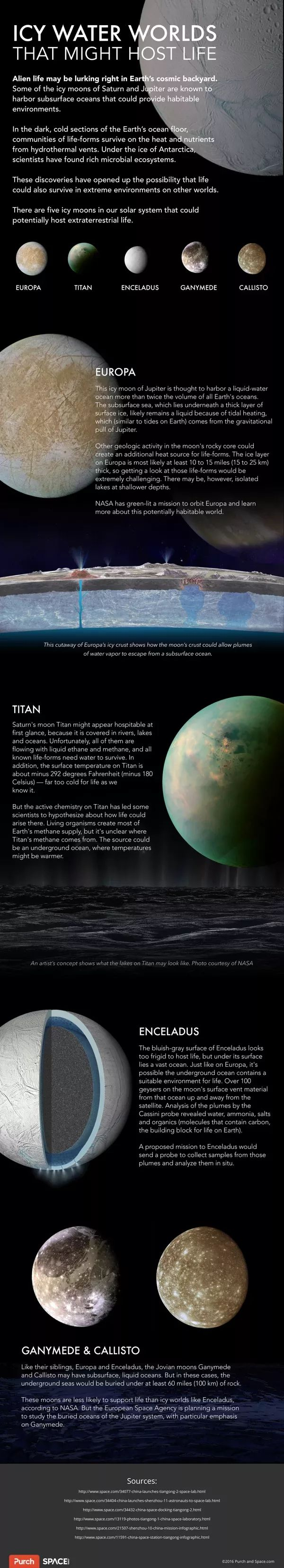 Icy Water Moons That Might Host Life (Infographic)
