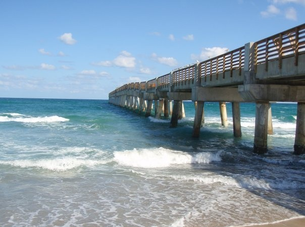 1000 images about lake worth pier on pinterest lakes for Lake worth pier fishing
