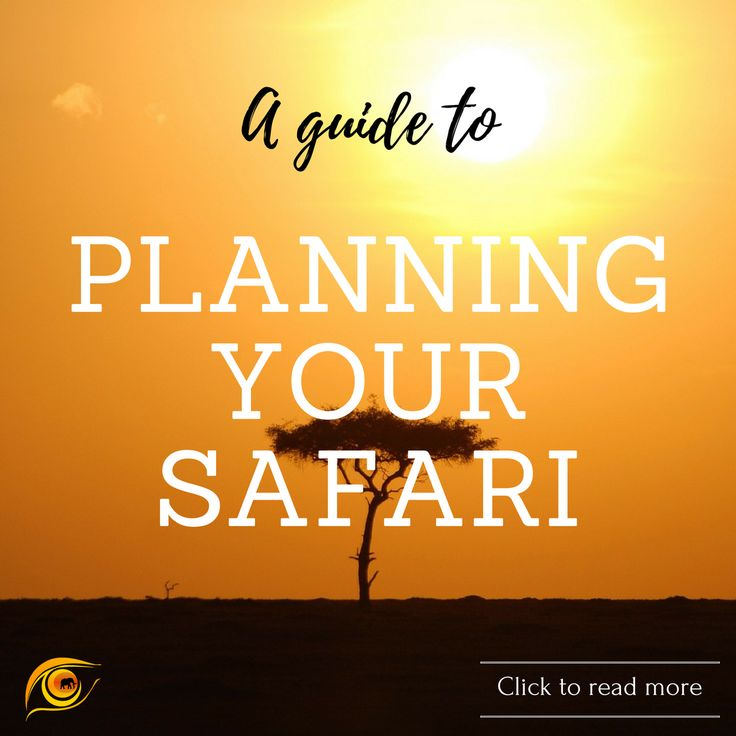 So you've decided you want to go. Now what? Here's a guide on how to plan your African safari. #tips #advice #safari #travel #africa