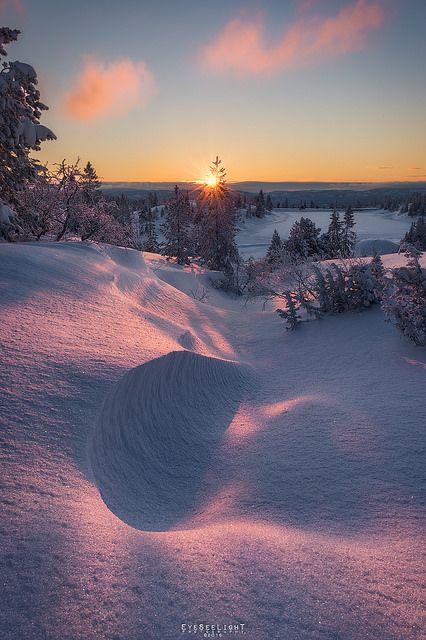 Winter Wonderland --- Buskerud, Norwegen NORWAY