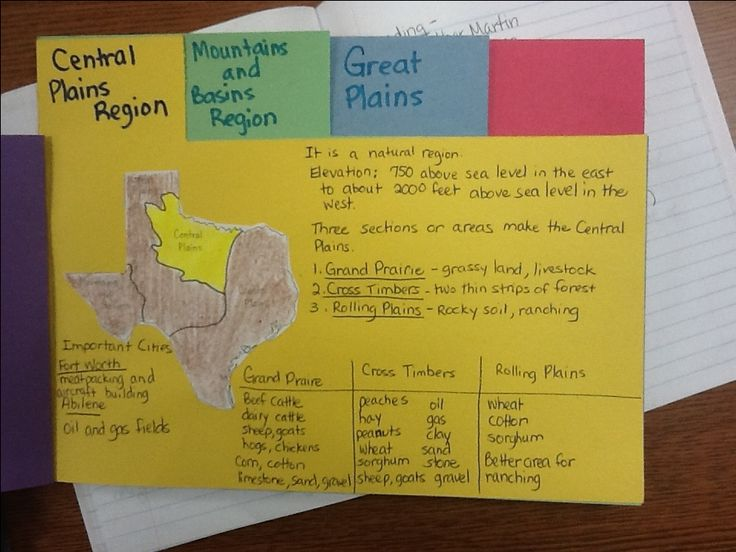 Texas Regions Booklet. I can use this Texas Regions Booklet for my unit by having the students create this booklet to help them categorize all of the different facts they will be learning about the four regions.