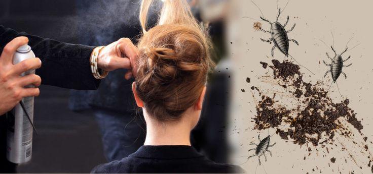 Läusekot für die perfekt sitzende Frisur