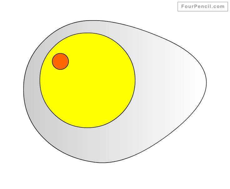 Egg Week: Meet Gudetama, a morose cartoon yolk who is the ... |Yolk Drawing
