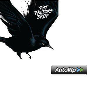 Fat Freddy's Drop - Blackbird (2013)