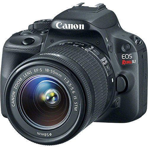 Best DSLR Camera for Beginners 2017