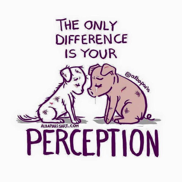 your perception....go vegan!