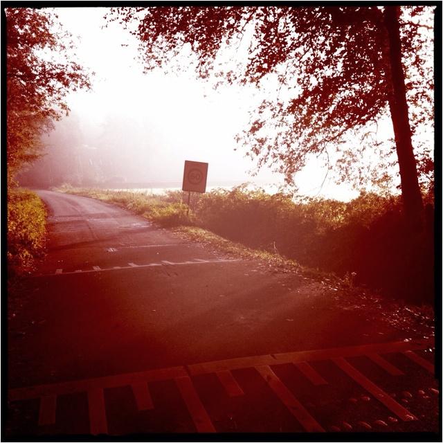 Zo mooi in de ochtend , zomaar tijdens een rondje hardlopen!