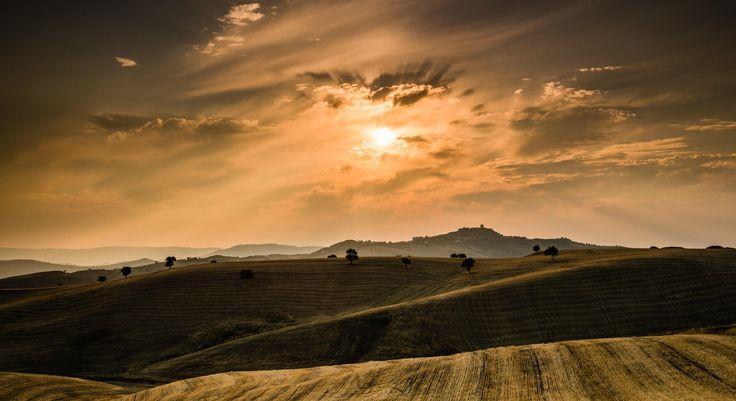 Photograph Sunrise on wheat by Stefano Sala on 500px