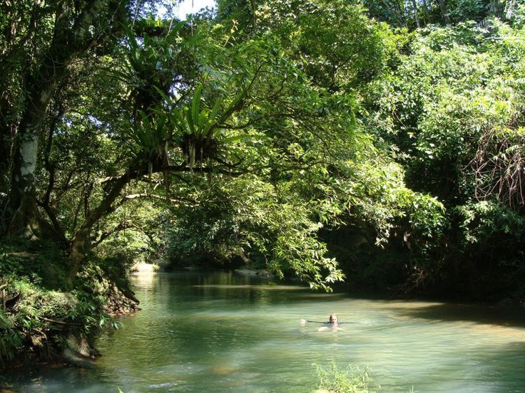 The dense jungle of Ujung Kulon National Park has beautiful rivers Photo by asiapulppaper, Flickr