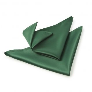 Plain Green Napkins - Set of 2 --- Quick Info: Price £4.00 Our Plain Green Napkins coming in a set of two and are ideal for use when enjoying special occasion dinners. --- Available from Roman at Home. Images Copyright www.romanathome.com