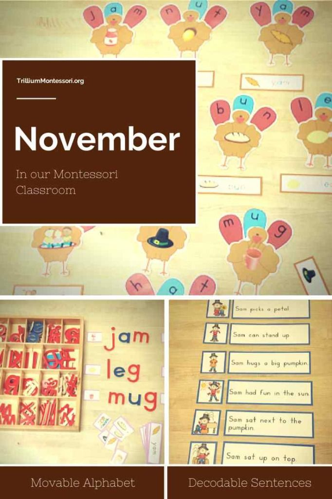 Classroom Ideas For November ~ Best images about seasonal november fall harvest