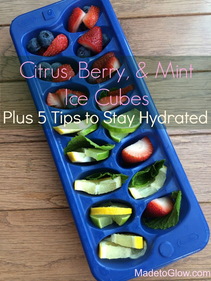 Guest Post on 6 Months to Live: Citrus, Berry, & Herb Ice Cubes Plus 5 Tips to Stay Hydrated