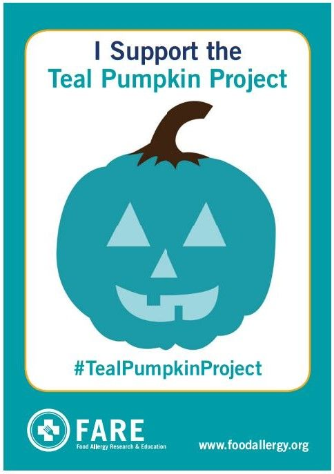 17 best images about the teal pumpkin project ideas on