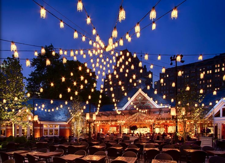 canopy designs lighting. tavern on the green over 400 petite chandeliers canopy designs for focus lighting