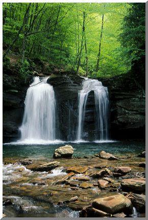 Seneca Falls, Monongahela National Forest, West Virginia.. thinkin' of Rachels book again! ((sigh))National Forest